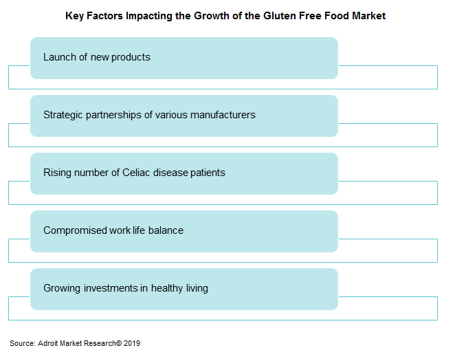 Key Factors Impacting the Growth of the Gluten Free Food Market