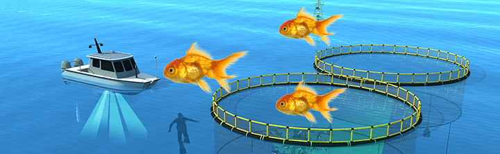 Sustainable Seafood and Integrated Fish Farming