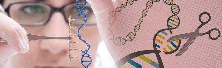 Gene Editing Revolutionizing Human Medicine & Agriculture