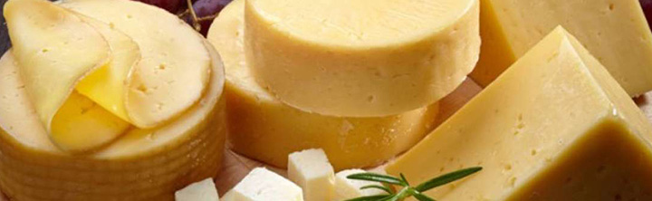 Mozzarella Cheese Popularity Growing Without Bounds