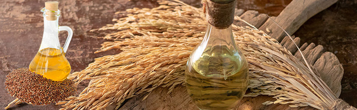 Rice Bran Oil Market: Novel Applications in Cosmetic and Drug Industries to Enhance Growth Prospects