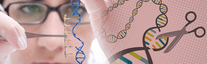 Why is Gene-Editing an Ethical Concern?