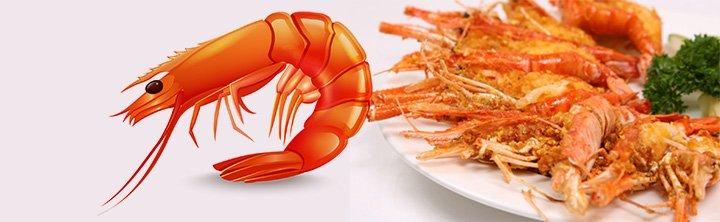 The rise and fall of shrimp farming in Ecuador