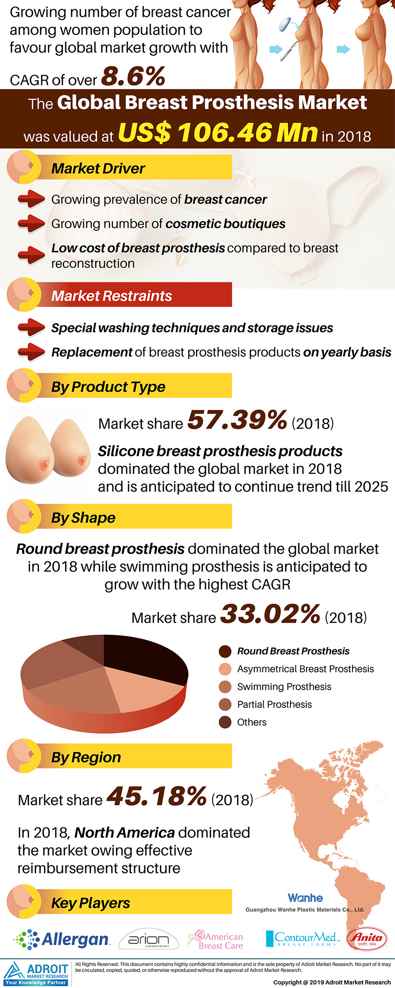 Global Breast Prosthesis Market Size 2017 By Product Type, Shape, Region And Forecast 2019 To 2025
