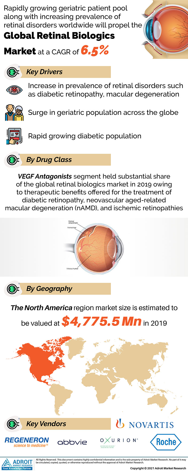 Global Retinal Biologics Market Size 2017 By Type, Device, Region and Forecast 2018 to 2025
