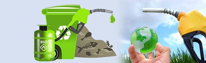 Biodiesel Market