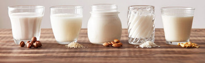 Dairy Alternatives Market Size and Business Opportunities
