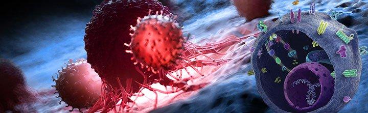 Immuno Oncology Assays Market Size to reach $10.2 billion by 2028