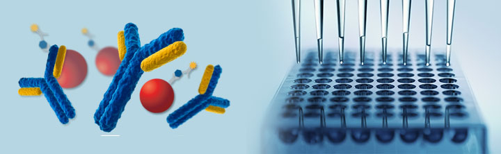 Immunoassay Market Size and Business Opportunities