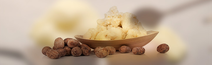 Global Shea Butter Market